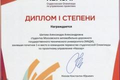 Квазар Шитова Диплом мал