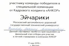 СЕРТИФИКАТ участнику команды№4 011