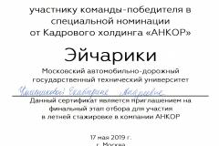 СЕРТИФИКАТ участнику команды №3 010
